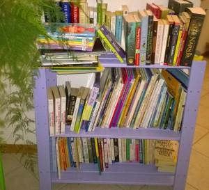 brithday books